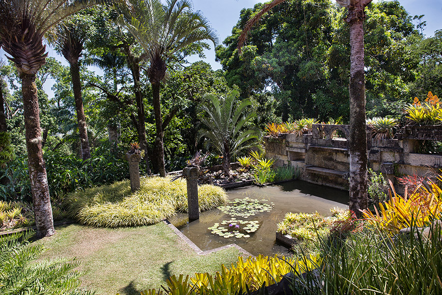 LIVING ART ROBERTO BURLE MARX NY Botanical Garden