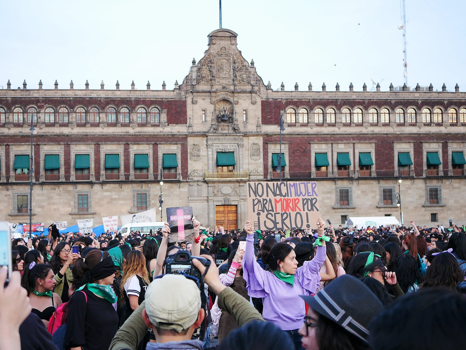 Femicide Protest Zocalo Sign