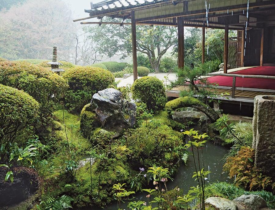 Sophie Walker Japanese Garden