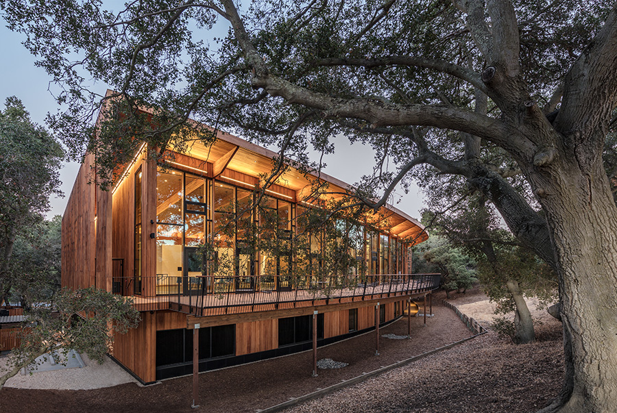 Ennead Knight-Hennessy stanford building