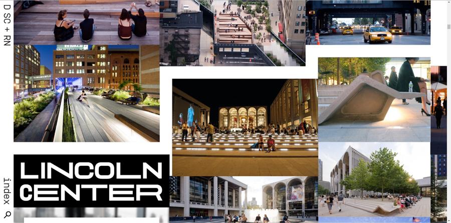 Diller Scofidio Renfro DSR New Website