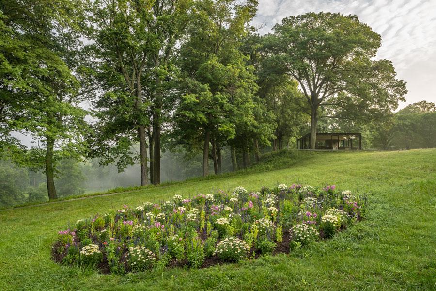 6 David Hartt A Colored Garden 10