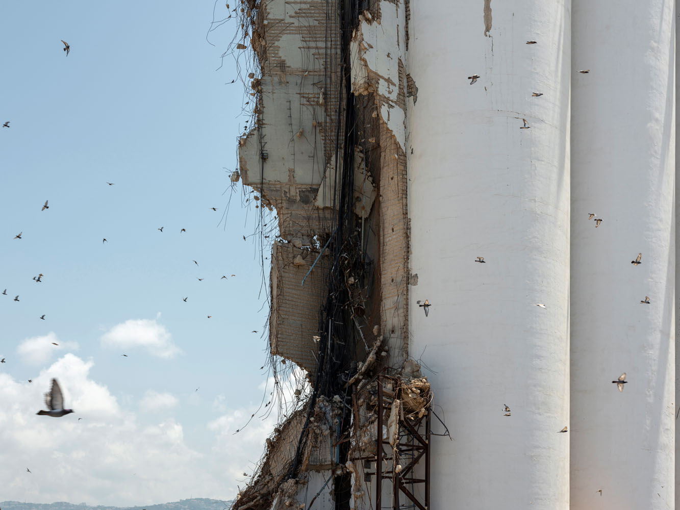 Birds fly past shattered grain silo