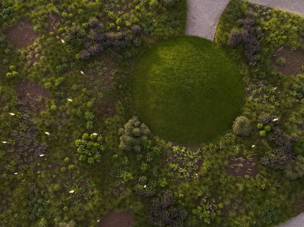 An overhead view of part of the garden.