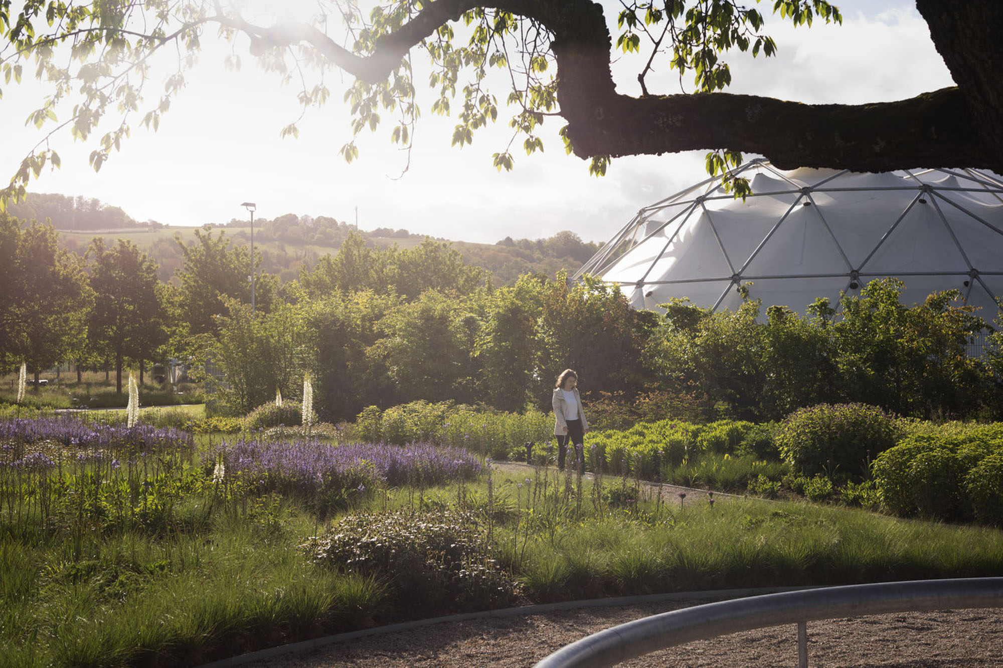 A geodesic dome and a person walking through the garden